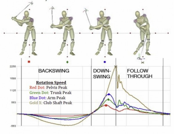 Improving Your Golf Balance Your Agonists And Antagonists